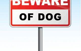 Dog bite claim | Attorney Javier Marcos