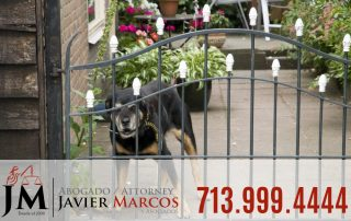 Dog bite claims   Attorney Javier Marcos 713.999.4444